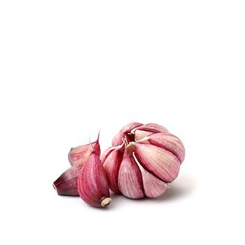 ambruosi_aglio-rosso