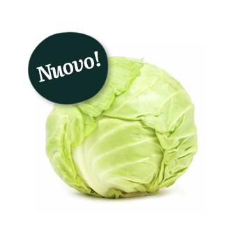ambruosi_cavolocappuccio
