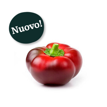 ambruosi_peperone-topepo-new